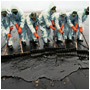 Oil Spills and Pollution Response